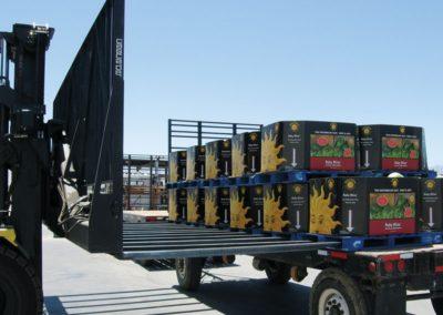 Multiple Load Handlers 04